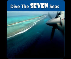 Absolute Scuba : Dive Destination
